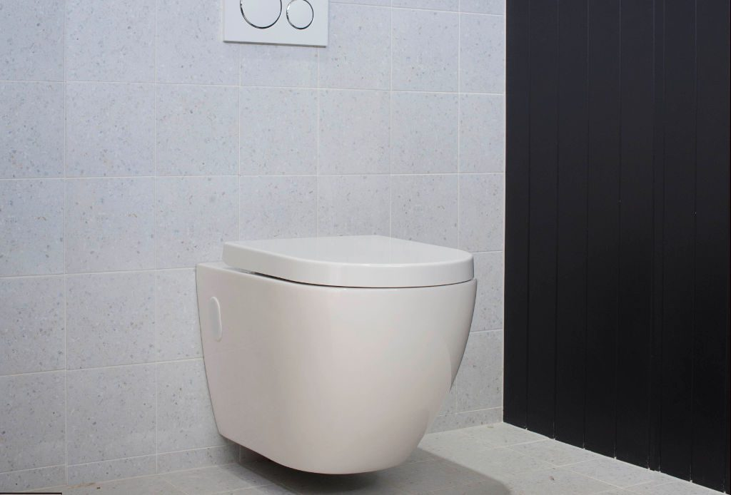 Wall Hung Toilet vs Floor Mounted Toilet