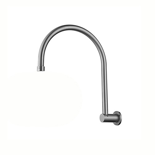 Polar+25 Shower Arm Ext BN