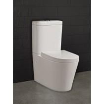 Mercury Wall Faced Toilet